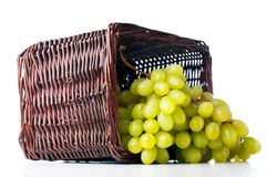 White grapes in a wicker basket Stock Image