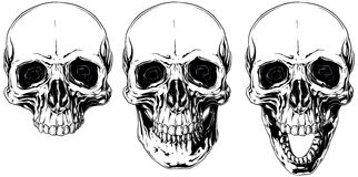 White graphic human skull with black eyes set Royalty Free Stock Images