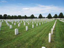 White Gravestones on Green Grass. White gravestones, green grass, trees, clouds, and blue sky Royalty Free Stock Image