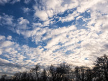 White and gray clouds in a blue sky with foreground Royalty Free Stock Photos
