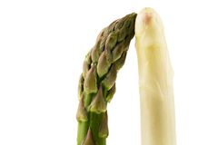White and green asparagus Royalty Free Stock Photo