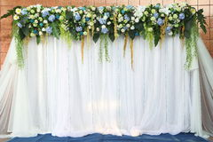 White and green backdrop flowers Royalty Free Stock Photography