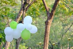 White green balloons over green nature background and sun light royalty free stock image
