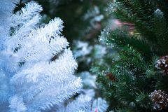 White and green Christmas pine tree at night soft focus.  Stock Photo