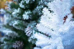 White and green Christmas pine tree at night soft focus.  Royalty Free Stock Photo