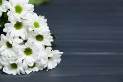 A bunch of white daisy flowers on rustic chalkboard table surface, with blur copy space background. A white and green daisy flowers bouquet with blurred stock photography