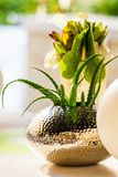 White and green flower display for table setting at Spring Festi. Val event Stock Image