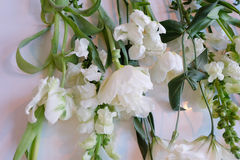 White and Green Flowers Royalty Free Stock Images