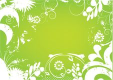 White and green flowers decoration Royalty Free Stock Photo