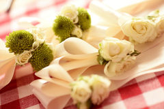 White and green flowers Royalty Free Stock Photos