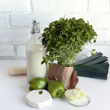 White and green food products:bottle of milk, leek, bree cheese, sweet green pepper, onions, basil herbs. Stock Photography