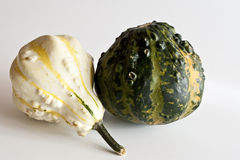 A white and a green mini pumpkin. Green and white mini pumpkins on white background Royalty Free Stock Image