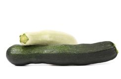 White and green vegetable marrow. Stock Image