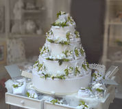 White and green wedding cake Stock Image