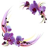 White greeting card with violet orchids Stock Photos