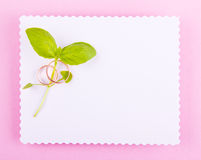 White greeting card with wavy edge is decorated with wedding rings and green plan on pink background. Royalty Free Stock Photos