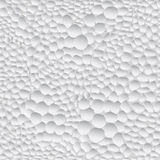 White & grey abstract background Stock Photo