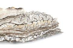 White grey alabaster agate Stock Image