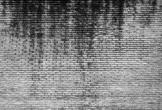 White and grey brick wall texture background with space for text. White bricks wallpaper. Home interior decoration. Architecture. Concept. Background for sad stock photography