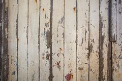 White/grey wood texture background with natural patterns royalty free stock photography