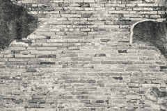 White grunge brick wall texture background Royalty Free Stock Images