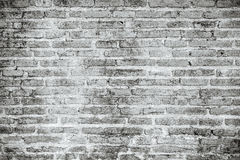 White grunge brick wall texture background Stock Photography