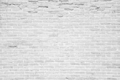 White grunge brick wall texture background Royalty Free Stock Photos