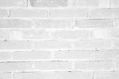 White grunge brick wall texture background Royalty Free Stock Photography