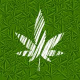 White grunge cannabis leaf on green pattern Royalty Free Stock Photos