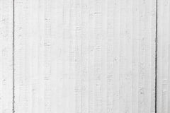 White grungy concrete wall background texture Stock Image