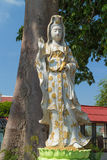 The white Guan Yin statue Royalty Free Stock Photos
