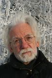 White haired man on winter tree background Stock Photos