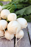 White Hakurei Turnips Stock Photography