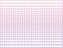 White Halftone on Pink and Violet Stock Photos