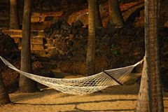 White hammock hanging under coconut Stock Image