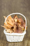 White hamper full of autumn leaves Royalty Free Stock Images