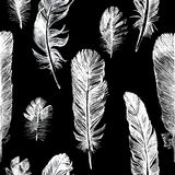 White hand drawn feathers set Royalty Free Stock Image
