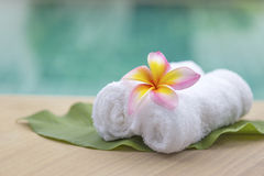White hand towel roll Royalty Free Stock Image
