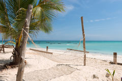 White handmade hammock with palm tree on Zanzibar beach Stock Photos