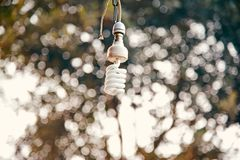 A white hanging electric lightbulb. Isolated object unique royalty free image royalty free stock photo