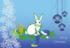 The white hare Royalty Free Stock Photos