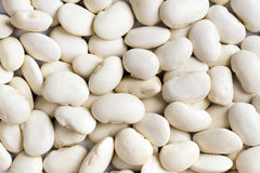 White haricot beans Royalty Free Stock Image