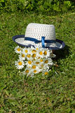 White hat and a bouquet of field flowers daisies Stock Image