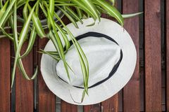 White hat top view green Royalty Free Stock Photography