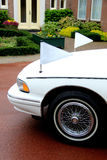 White hearse Royalty Free Stock Photos