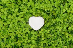 White heart on bed of clover royalty free stock photos