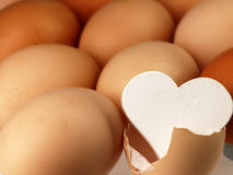 White heart comes from a broken egg. Stock Images
