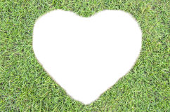 White heart of  grass Royalty Free Stock Images