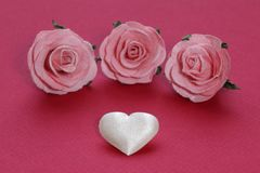 White heart and pink roses Royalty Free Stock Photos