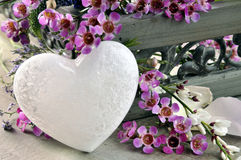 White heart and purple flowers Stock Photo